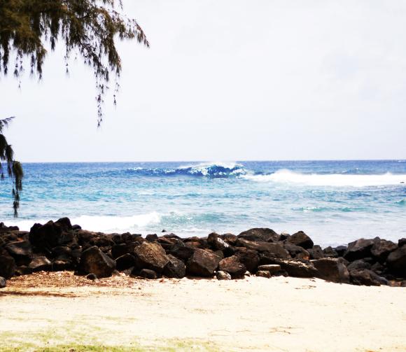 beaches of Kauai