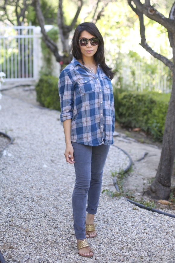 flannel, blue shirt